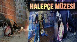 Halepçi Müzesi