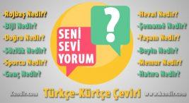Kürtçe seni çok seviyorum çevirisi