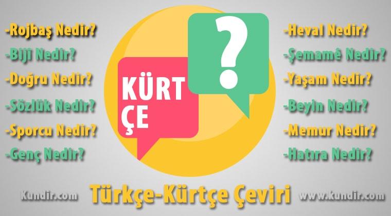 Kürtçe Ne çevirisi