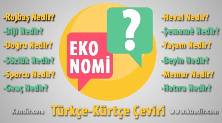 Kürtçe ekonomi çevirisi
