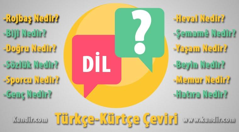 kürtçe dil çevirisi