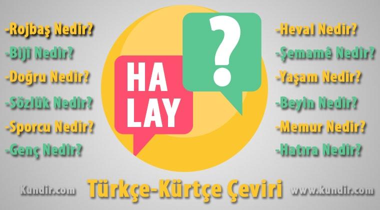 Kürtçe Halay-Govend Çevirisi Anlamı ve Karşılığı