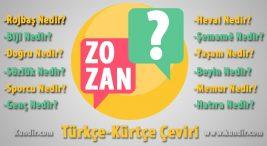 Kürtçe Yayla-Zozan Çevirisi Anlamı ve Karşılığı