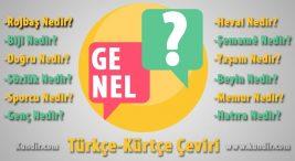 Kürtçe Genel Çevirisi