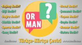 Kürtçe Orman Çevirisi
