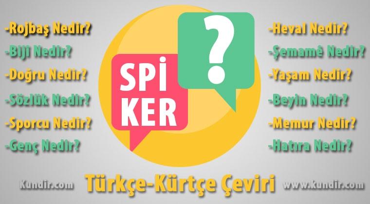 Kürtçe Spiker Çevirisi