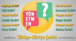 Kürtçe Yönetmen Nedir?