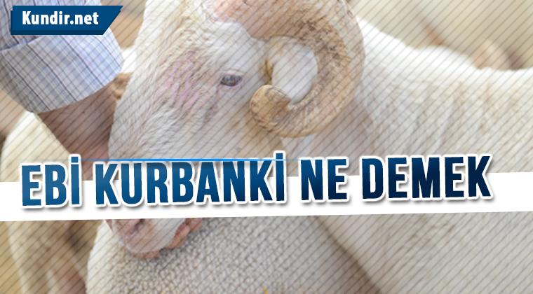 Ebi Kurbanki Türkçesi